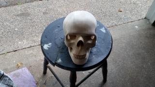 skull-12
