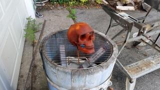 skull-13