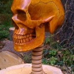 Life Sized, Anatomically Correct Human Skull